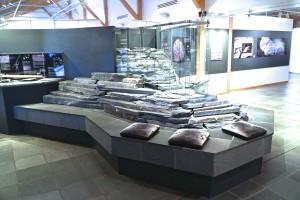 Alta001-0391Altamuseum