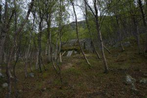 Alta Lerres hule 6