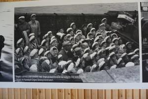 Berlevåg havnemuseum 9