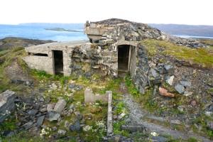 Berlevåg kongsfjord 2