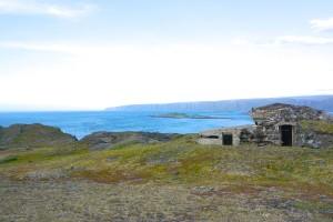 Berlevåg kongsfjord 5