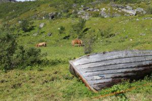 Hasvik Hasfjord 4