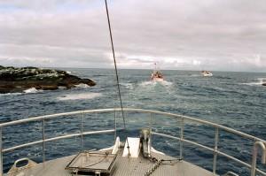 Hasvik001-0047mange båter