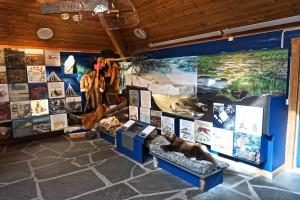 Porsanger naturhus museum 3