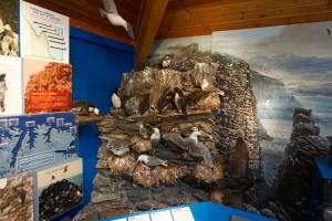 Porsanger naturhus museum 4