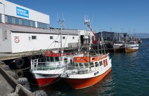 Berlevåg havn 7 fiskebåter