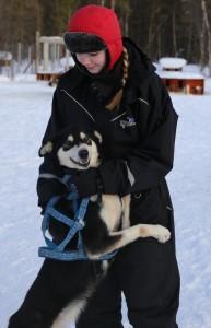 Alta Holmen hund 05