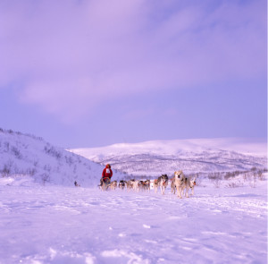 Finnmarksløpet6