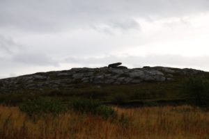 Nesseby Bjørnestein 011