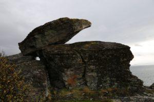 Nesseby Bjørnestein 019