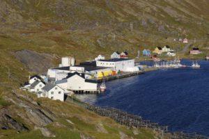 ma%cc%8asoy-tufjord-103