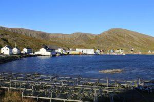 ma%cc%8asoy-tufjord-108