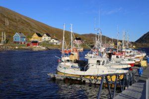 ma%cc%8asoy-tufjord-12