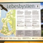lebesby-tursti-2
